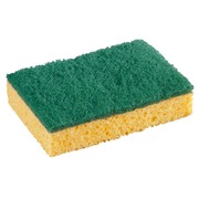 Set of 2 antibacterial sponges Spontex