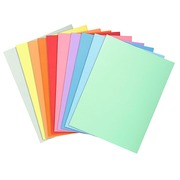 Folders in superior quality 210 g Exacompta 24 x 32 cm color - pack of 10