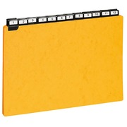 Guide cards 210 x 297 mm Exacompta yellow - set of 24