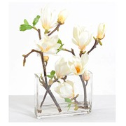 Indoor plant branches of white magnolia + elongated vase